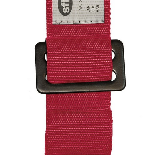 Racing Harness 5 point 3 Pink 3